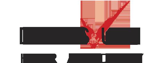 לוגו דיויס ואודי עיצוב שיער