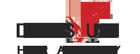 לוגו עיצוב שיער דיויס ואודי